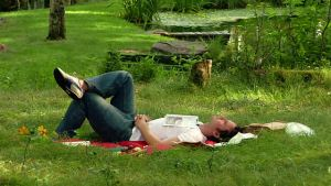 man resting in a park