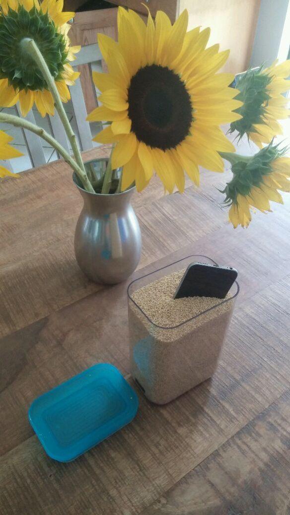 Millet - a healthy grain