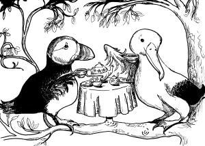 Puffin & Albatross 001