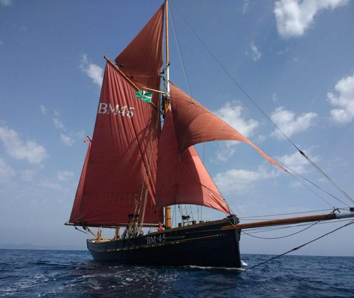 Day Sail in Torbay