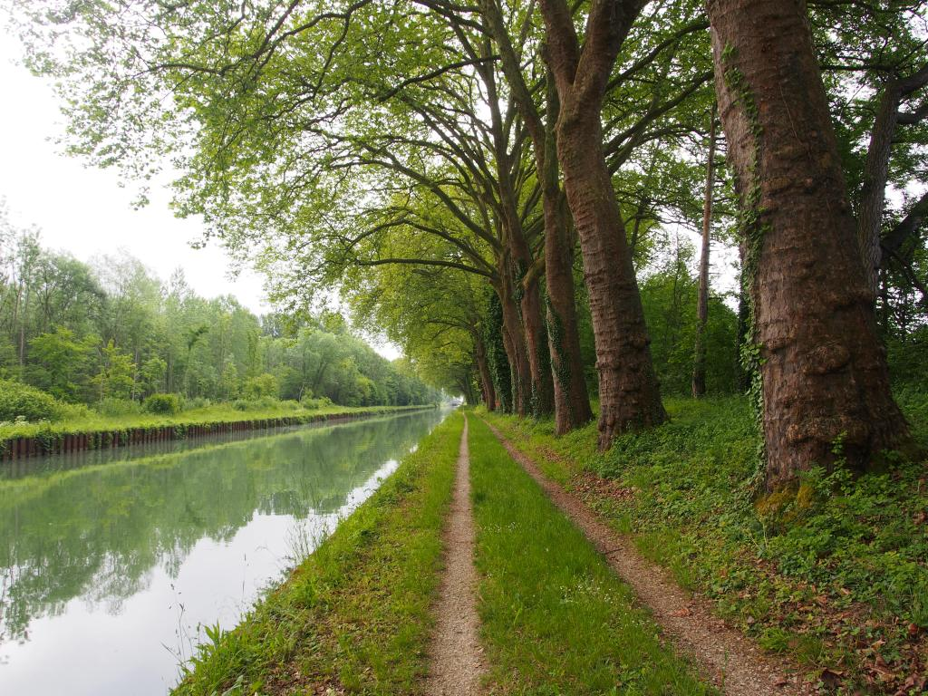 Canal on way to Chalon-en-Champagne