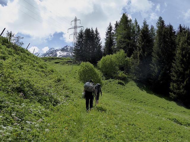 Through the grassy meadows, climbing towards Grand St Bernards pass.