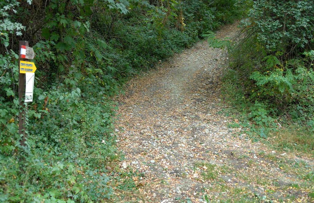 Path leaving Terenzo