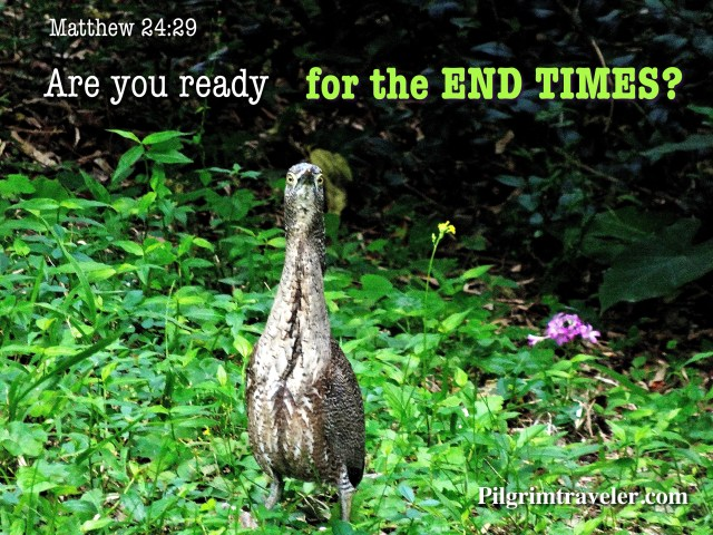 """Matthew 24:29 """"Are you ready for the END TIMES?"""""""