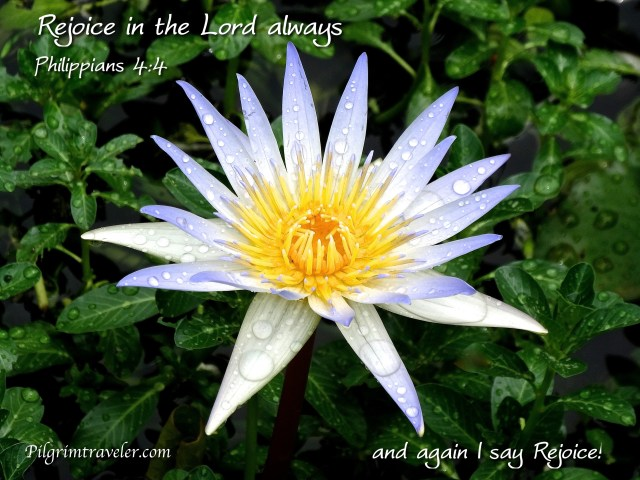 """Philippians 4:4 """"Rejoice in the Lord always: and again I say, Rejoice!"""""""