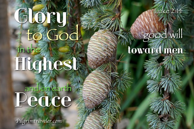 "Luke 2:14 ""Glory to God in the highest, and on earth peace, good will toward men."""