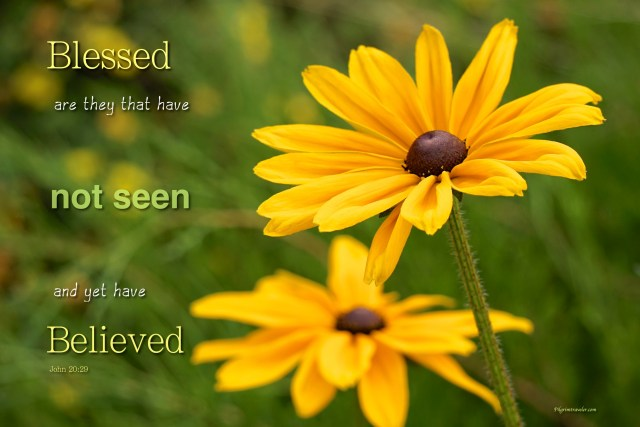 "John 20:29 ""Blessed are they that have not seen, and yet have believed."""