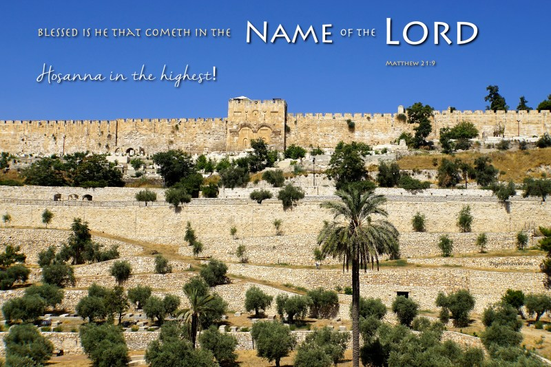 "Matthew 21:9 And the multitudes that went before, and that followed, cried, saying, Hosanna to the son of David: ""Blessed is he that cometh in the name of the Lord; Hosanna in the highest!"""