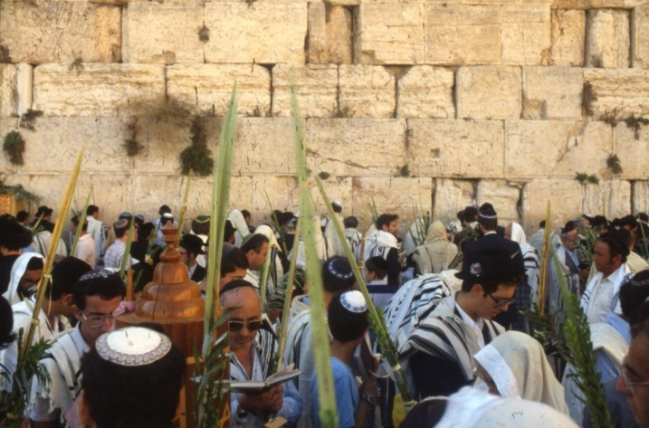LoofhFeest_PikiWiki_Israel_14882_Western_Wall_in_Jerusalem_Jacob Shane