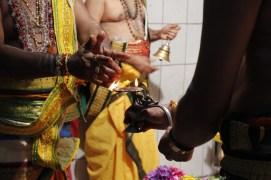 Aaraam Thiruvilaa (Iravu) - Mahotsavam 2014 (20)