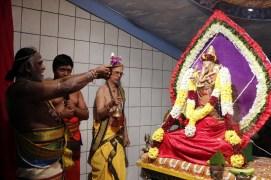Aaraam Thiruvilaa (Iravu) - Mahotsavam 2014 (31)