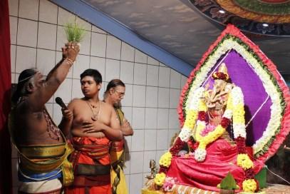 Aaraam Thiruvilaa (Iravu) - Mahotsavam 2014 (41)