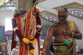 Aaraam Thiruvilaa (Kaalai) - Mahotsavam 2014 (3)