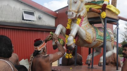 Ealaam Thiruvilaa (Iravu) - Mahotsavam 2014 (14)