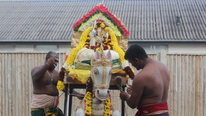Ealaam Thiruvilaa (Iravu) - Mahotsavam 2014 (32)