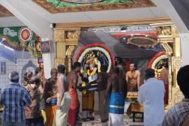 Ealaam Thiruvilaa (Kaalai) - Mahotsavam 2014 (86)