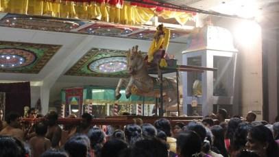 Ettaam Thiruvilaa (Iravu) - Mahotsavam 2014 (129)