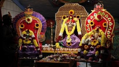 Ettaam Thiruvilaa (Iravu) - Mahotsavam 2014 (17)