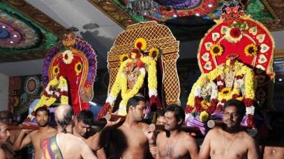 Ettaam Thiruvilaa (Iravu) - Mahotsavam 2014 (31)