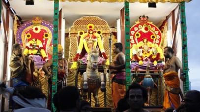 Ettaam Thiruvilaa (Iravu) - Mahotsavam 2014 (90)