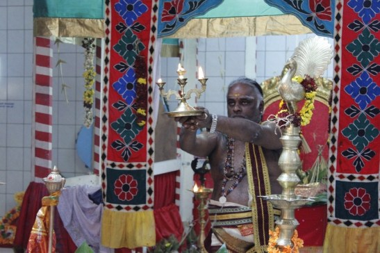 Ettaam Thiruvilaa (Kaalai) - Mahotsavam 2014 (71)