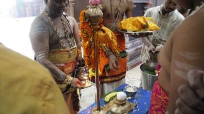 Moontraam Thiruvilaa (Kaalai) - Mahotsavam 2014 (28)