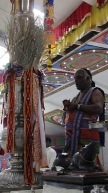 Naangaam Thiruvilaa (Kaalai) - Mahotsavam 2014 (15)