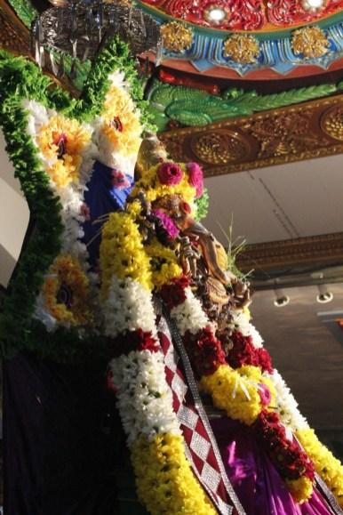 Naangaam Thiruvilaa (Kaalai) - Mahotsavam 2014 (44)