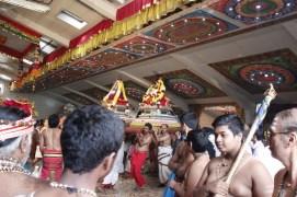 Onbathaam Thiruvilaa (Therthiruvilaa) - Mahotsavam 2014 (154)
