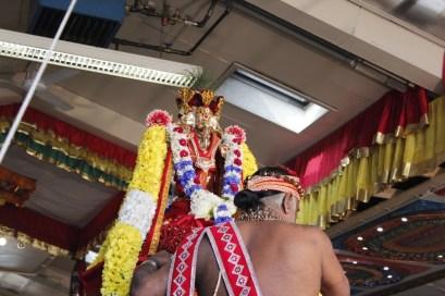 Onbathaam Thiruvilaa (Therthiruvilaa) - Mahotsavam 2014 (166)