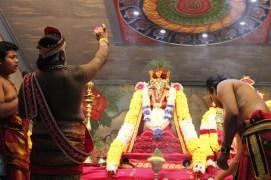 Onbathaam Thiruvilaa (Therthiruvilaa) - Mahotsavam 2014 (19)