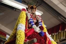 Onbathaam Thiruvilaa (Therthiruvilaa) - Mahotsavam 2014 (212)