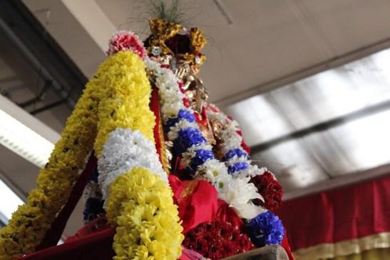 Onbathaam Thiruvilaa (Therthiruvilaa) - Mahotsavam 2014 (214)