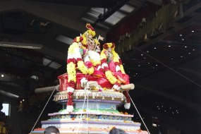 Onbathaam Thiruvilaa (Therthiruvilaa) - Mahotsavam 2014 (238)