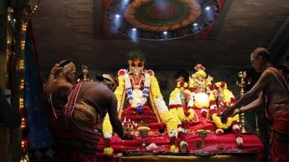 Onbathaam Thiruvilaa (Therthiruvilaa) - Mahotsavam 2014 (31)