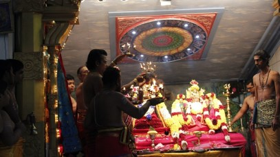 Onbathaam Thiruvilaa (Therthiruvilaa) - Mahotsavam 2014 (33)