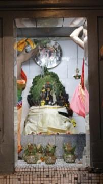 பத்தாம் திருவிழா – தீர்த்தம் (மகோற்சவம் 2014) 23