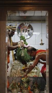 பத்தாம் திருவிழா – தீர்த்தம் (மகோற்சவம் 2014) 31