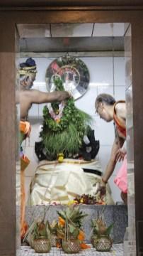 பத்தாம் திருவிழா – தீர்த்தம் (மகோற்சவம் 2014) 30