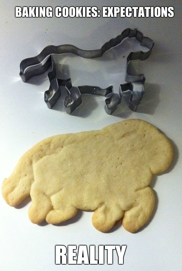 baking-cookies-expectations-vs-reality