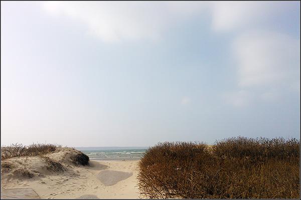 beach1835