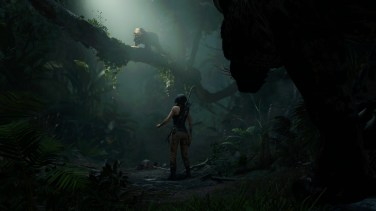Shadow of the Tomb Raider_110
