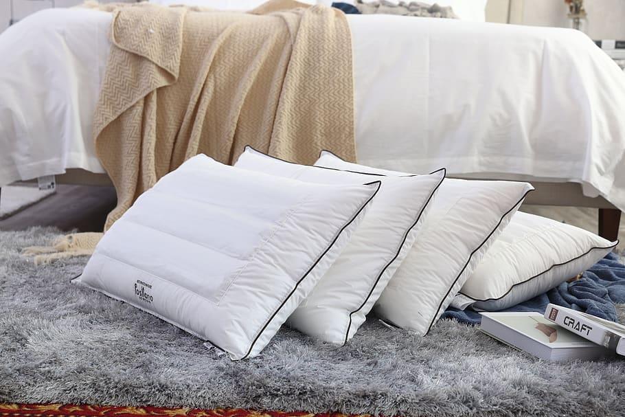 beautyrest black pillow may 2021