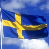 Pilot-tłumacz z jęz. szwedzkim lub norweskim