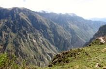 Arequipa,Colca,Peru (108) (800x533)