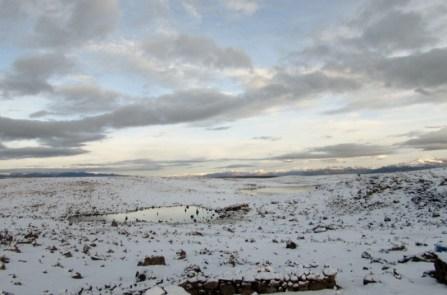 Arequipa,Colca,Peru (68) (800x533)