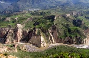 Arequipa,Colca,Peru (91) (800x533)