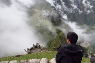 Machu Picchu, Peru (110) (800x533)