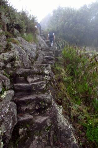 Machu Picchu, Peru (89) (533x800)