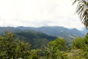 Salento, Colombia (23) (640x426)
